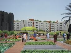 Concurso Mass Housing - Regional - Estados Árabes - Primeiro Lugar - Imagem