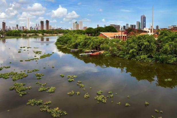 Escola Novo Mangue - Recife/PE_ Foto: Mateus Sá