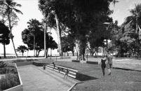 Premiados - Concurso Requalificação Praça Feira-Mar - Destaque - Imagem 3