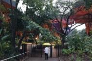 Orquideorama - Imagem 14 - Fotos por_Cristobal Palma