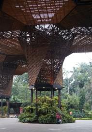 Orquideorama - Imagem 17 - Fotos por_Cristobal Palma
