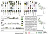 Concurso Nacional – Parques de Águas Claras - DF – Finalista 36 – Prancha 03