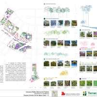 Concurso Nacional – Parques de Águas Claras - DF – Menção Honrosa – Prancha 06