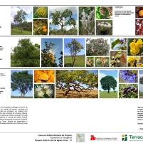 Premiados - Concurso Nacional – Parques de Águas Claras - DF – Primeiro Lugar – Prancha 08