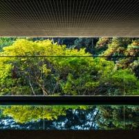NASP - Sede Natura - São Paulo - Imagem 18